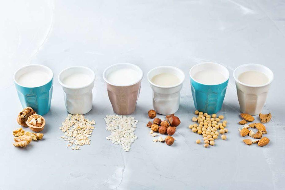 Pflanzliche Alternativen zu Milch